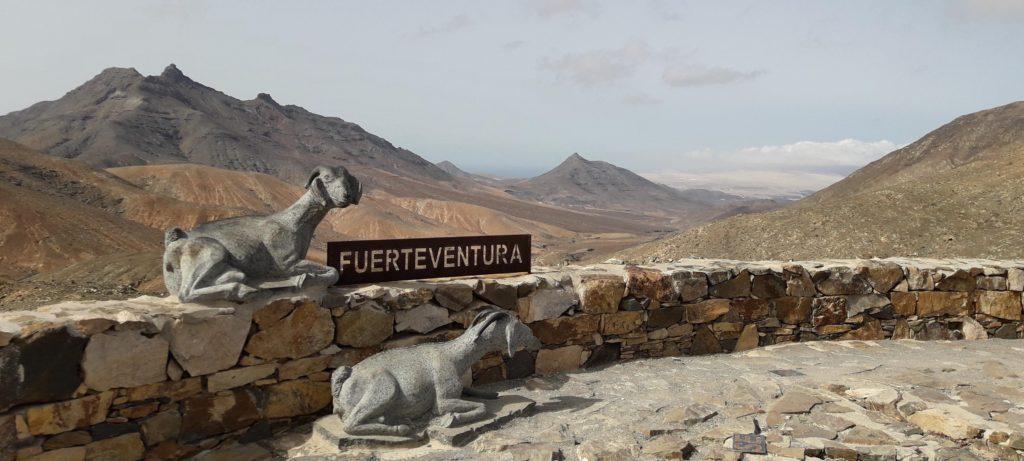 Fuerteventura_Mirador